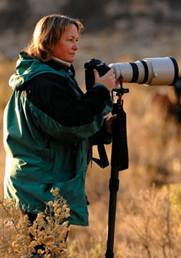 5 : Carol Walker – Wild Horse Photography – Fine Art and Online Sales – PODCAST