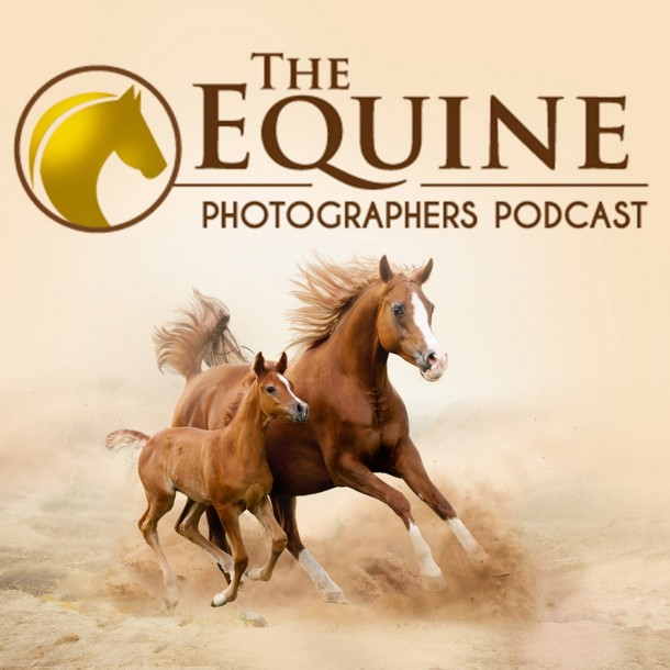 Equine Photographers Podcast website goes live