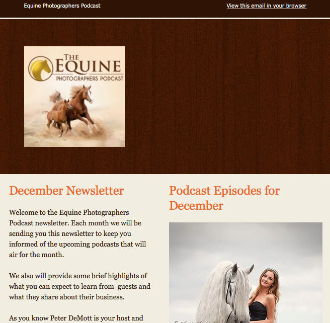 The Equine Photographers Podcast Letter and Bonuses