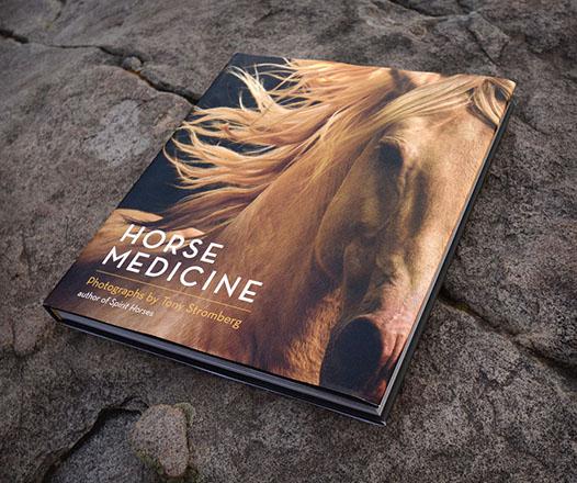 horsemedicine