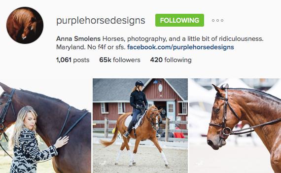 Anna Smolens Purple Horse Design Instagram Account